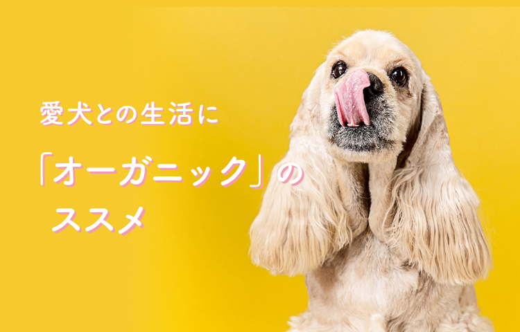 愛犬との生活に「オーガニック」のススメ
