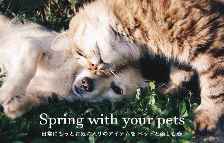 PoshPetの春
